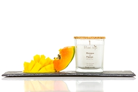 Soy Candle - Mango and papaya