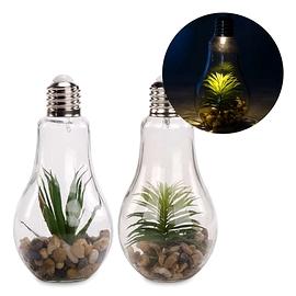 Ampoule terrarium avec lumière