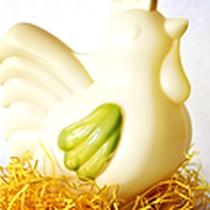 Papa Poule chocolat blanc