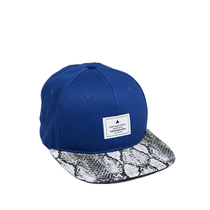 Cap with snake design