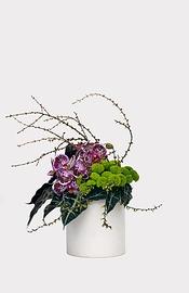 Création florale: MAUVE