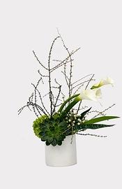 Création florale: BLANC HYBRIDE
