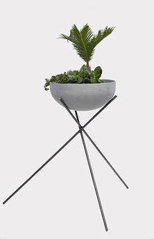 Metal Stand and Garden of Succulents