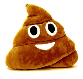 Coussin Emoji Poopoo