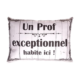 Coussin texte Un Prof Exceptionnel