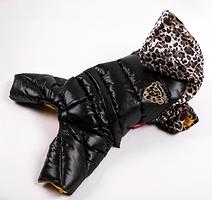 Le 4 pattes léopard