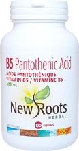 New Roots B5 Pantothenic Acid 100 caps