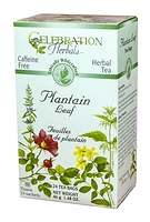 Celebration Herbals Plantain Leaf Herbal Tea 24 Tea Bags / 42 g
