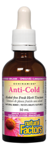 Natural Factors ECHINAMIDE Anti-Cold Fresh Herb Tincture 100 ml