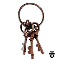 Trousseau 3 clés décoratives w6046 (250)